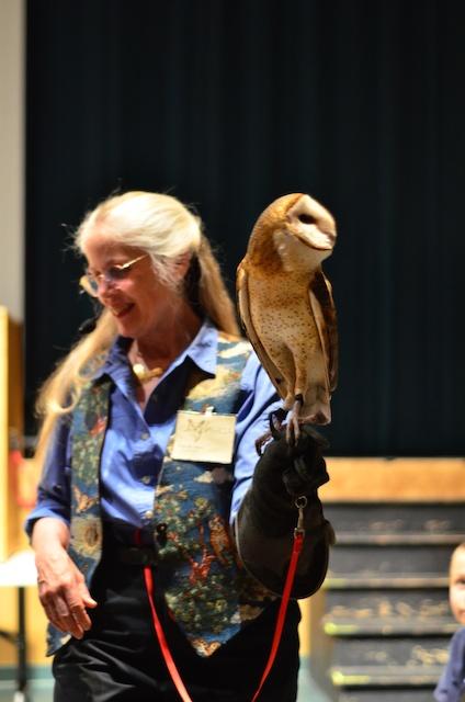 Littleton Lyceum: Eyes on Owls