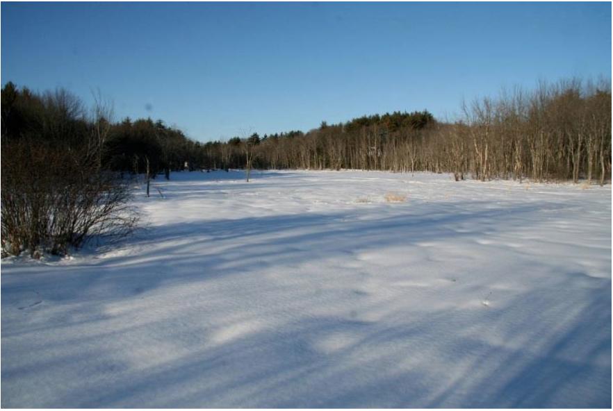cloverdale-winter