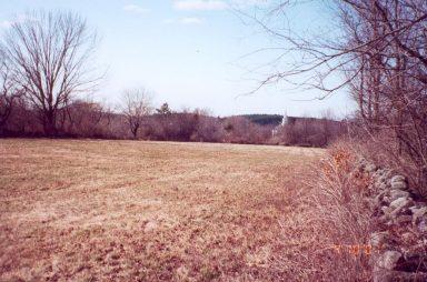 morgan-field