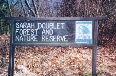 sarah-trail-head