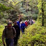 image of group walking