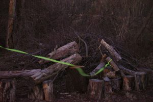Image of a brush pile at Cloverdale