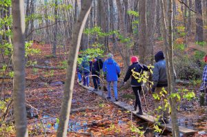 Hikers in Nashoba Woodlands