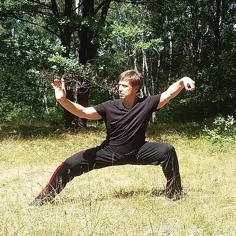 Intro to Tai Chi and Qigong at Sarah Doublet Forest
